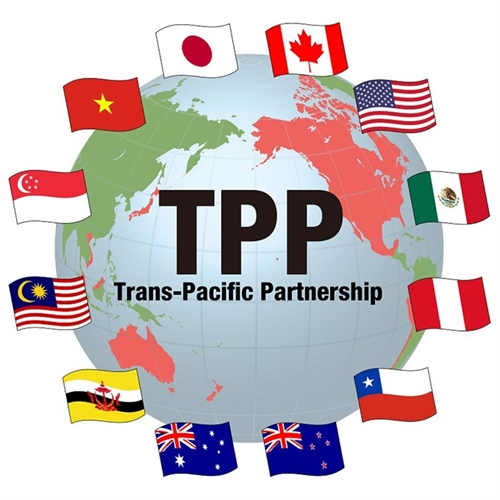 VN laws need fine tuning for TPP: report