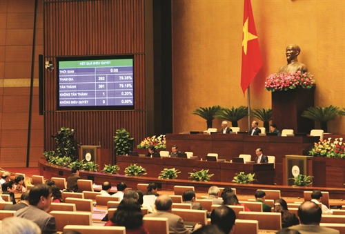 Peoples interests are the root of the law: senior lawmaker