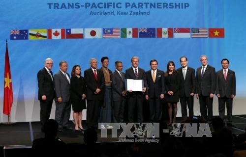 Government plans to submit TPP to National Assembly for ratification in July