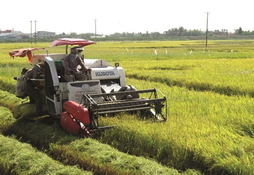 More incentives to lure agriculture investors