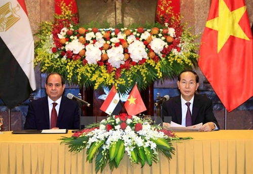 Vietnamese Egyptian Presidents seek stronger cooperation