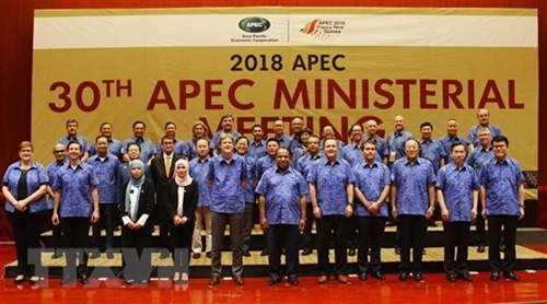 APEC remains focus of Vietnams foreign policy: Deputy PM