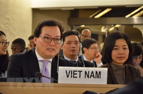 Vietnam supports peaceful use of nuclear power: Ambassador