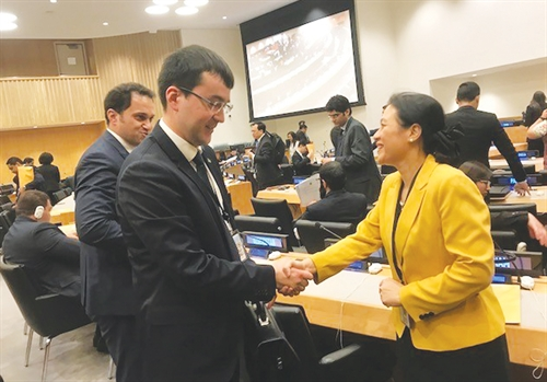 Vietnam in the run for UN Security Council seat