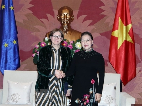 NA Chairwoman meets with EP Vice President