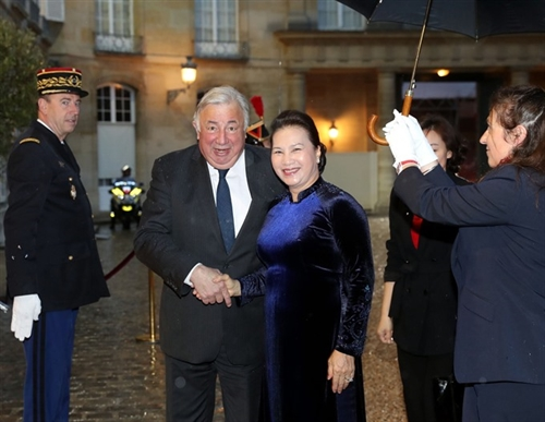 France a priority partner: NA Chairwoman