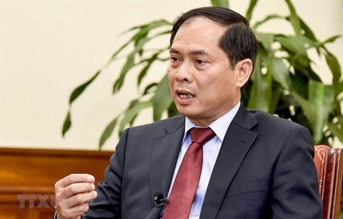 Vietnam to continue with efforts to realize APEC Vision 2040: Official