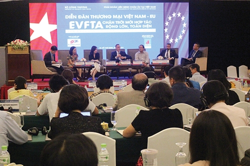 How will the EVFTA contribute to more transparency?