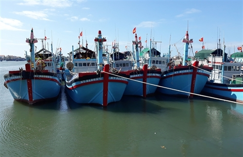 Chinas suspension of fishing in Vietnamese waters meaningless: ministry