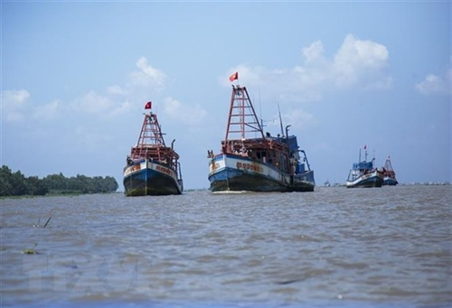 Society opposes Chinese fishing bans in East Sea