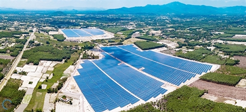 Binh Dinh province eyes hi-tech green investment