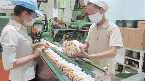 Tobacco production and trading licenses to be valid for 5 years