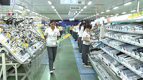 Thai Binh province: Former rice granary emerges as an FDI destination in Red River delta