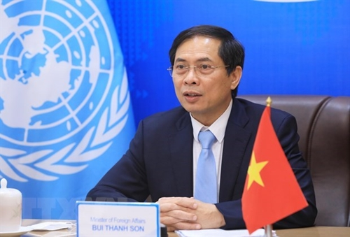 Vietnam values relations with ESCAP: Foreign Minister
